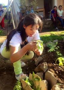 SERES:Guatemalan Youth Dream Big for Sustainable Communities  @ Rainbow Cafe